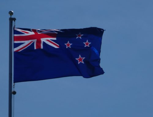 I am a New Zealand Citizen, what is my immigration status and visa pathways?